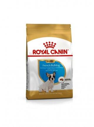 French Bulldog Puppy Royal Canin