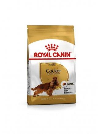 Cocker Spaniel Adult Royal Canin