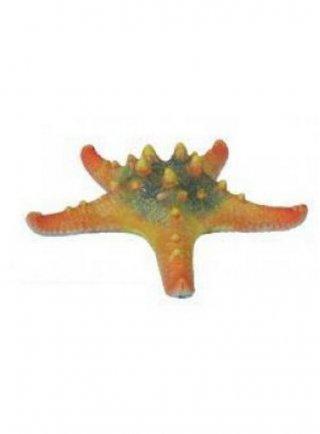 Haquoss decorazione finto corallo protoreaster