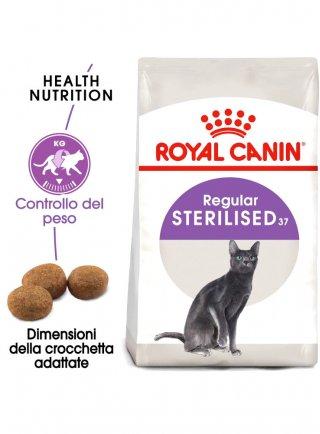 Regular Sterilised gatto Royal Canin
