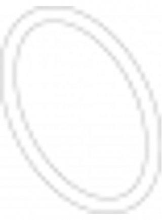 Sicce Ricambio SYNCRA NANO O-Ring