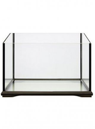 Tartarughiera in vetro bella vasca da allestire