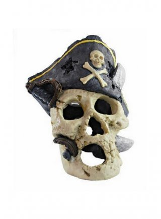Decorazione per acquari e terrari Haquoss Captain Skull