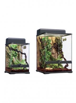 Terrarium habitat kit rainforest terrario phelsuma