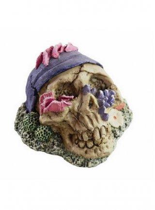 Decorazione per acquari e terrari Haquoss Koral Skull 1