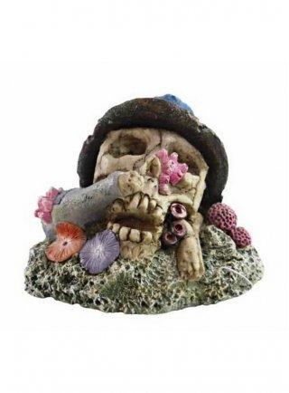Decorazione per acquari e terrari Haquoss Koral Skull 3