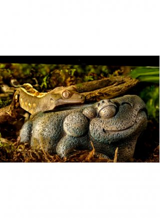 Exo Terra Decorazione per terrario Aztec Frog Water Dish