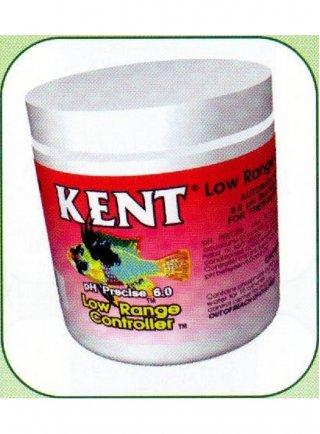 Kent low range controller 100gr