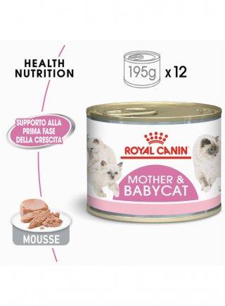 Babycat instinctive Royal Canin 195 gr