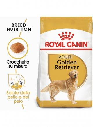 Golden Retriever Adult Royal Canin