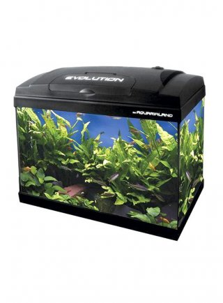 Acquario Evolution 50 haquoss lt 56 cm 50x30x46h