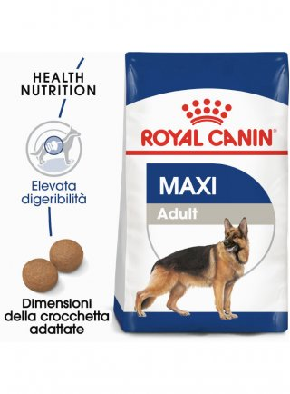Maxi Adult cane Royal Canin