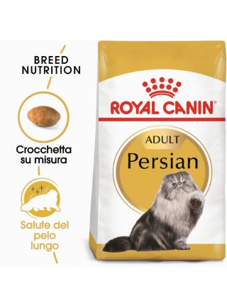 Persian Royal Canin
