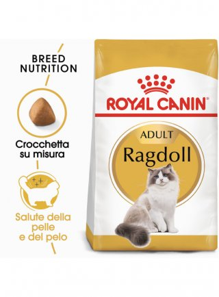 RAGDOLL Royal Canin