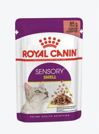 Royal Canin gatto SENSORY SMELL Salsa 12X85G