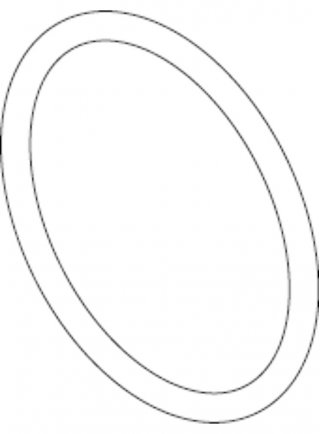 Sicce Ricambio SYNCRA ADV 5.5 O-Ring rotore