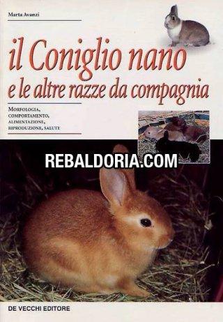 Il coniglio nano e le altre razze da compagnia