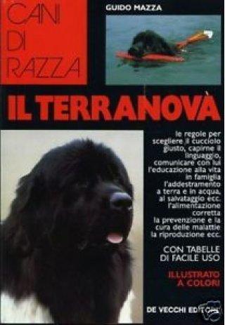 Cani di razza: Il terranova