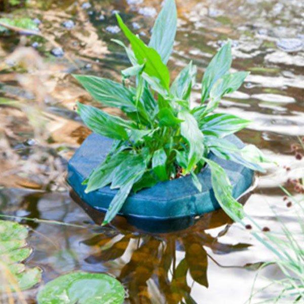 Cesto per piante laghetto galleggiante cm25 heissner for Piante da laghetto ossigenanti