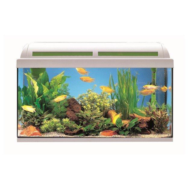 acquario ambiente 50 bianco askoll prezzo offerta askoll