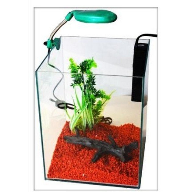 Acquario per caridine piccolo per acqua dolce nanokubus for Filtro vasca pesci