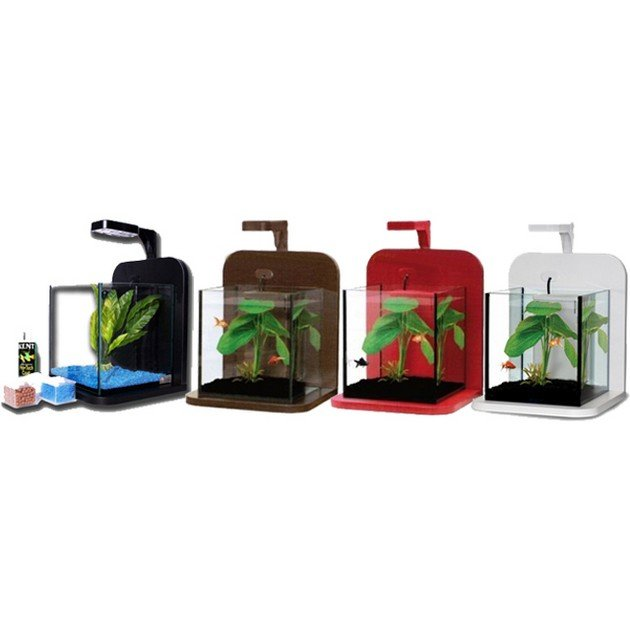 Set acquario minicub completo 10lt petingros for Acquario bianco usato