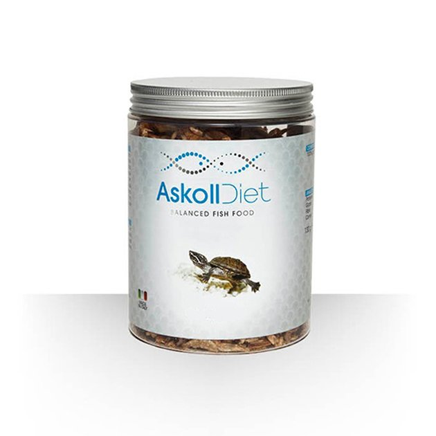 Askoll diet mangime per tartarughe acquatiche pesciolini for Mangime tartarughe acqua