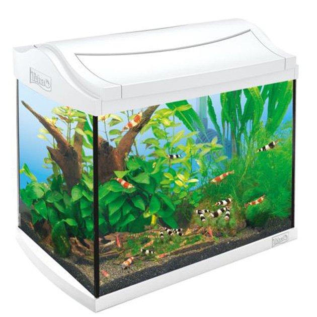 acquario tetra aqua art led 30 lt bianco tetra. Black Bedroom Furniture Sets. Home Design Ideas