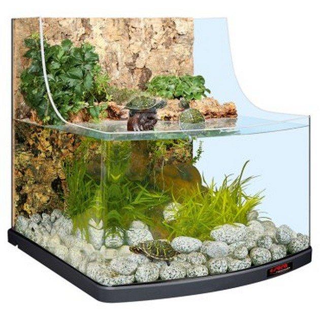 Aquaterrario aqua biotop 60 sera sera for Mangime tartarughe acqua